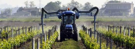 Chemicals spread on vineyards in Bordeaux area